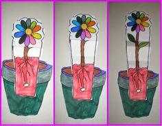 """παιχνιδοκαμώματα στου νηπ/γειου τα δρώμενα: η """"ανατομία"""" ενός λουλουδιού !!!"""