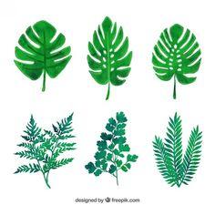緑の葉の様々な 無料ベクター