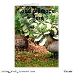 Duckling_Watch,_ Greeting Card