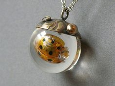 Golden Ladybug Necklace Made With Real Insect in Resin Orb. $85.00, via Etsy.