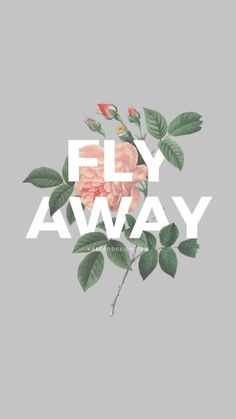 Find images and videos about flowers, wallpaper and rose on We Heart It - the app to get lost in what you love. Tumblr Wallpaper, Cool Wallpaper, Mobile Wallpaper, Pattern Wallpaper, Wallpaper Quotes, Wallpaper Backgrounds, Iphone Wallpaper, Wallpapers Wallpapers, Aesthetic Wallpapers