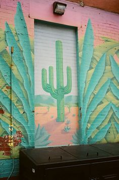 Cactus - jesuisperdu-james-huang