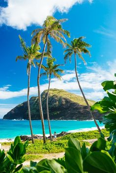 Oahu Hawaii, one day i will come for you