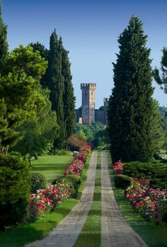 Travel Inspiration for Italy - Sigurtà Park, near Verona and Lake Garda, Italy is considered one of the 5 most beautiful gardens in the world. See the Asters in bloom in September. Places Around The World, The Places Youll Go, Places To See, Around The Worlds, Beautiful World, Beautiful Gardens, Beautiful Places, Beautiful Park, Simply Beautiful
