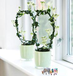 De tio bästa blommande krukväxterna för nybörjare | Wexthuset Decor, Vase, Home Decor