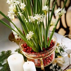 Paperwhites & Cranberries ...paperwhites are among the easiest flowers to grow and maintain. Place your variety in a glass pot and fill with cranberries. Scatter evergreen pieces and cranberries around the arrangement for a pretty centerpiece or elegant side table display.