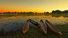 Botswana's high-value, low-volume tourism strategy   MNN - Mother Nature Network