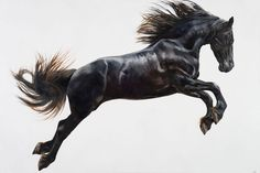 Fine Art Equine POSTER 'Take the Leap'