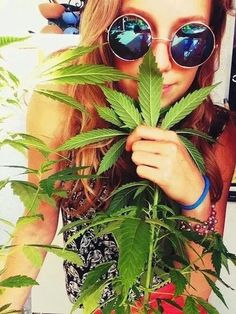 Hippie holding a beautiful marijuana plant