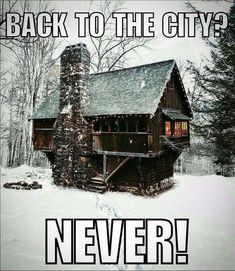 Tiny House Cabin, Cabin Homes, Log Homes, Tiny Homes, Off Grid, Survival, Country Girl Life, Country Girls, Building A Shed