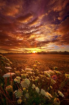 https://flic.kr/p/wPgntm   The Goodness of the Lord   Wisconsin Horizons By Phil Koch. Lives in Milwaukee, Wisconsin, USA. phil-koch.artistwebsites.com www.facebook.com/MyHorizons