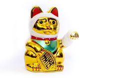Astori-neko (o gato de la resiliencia económica)