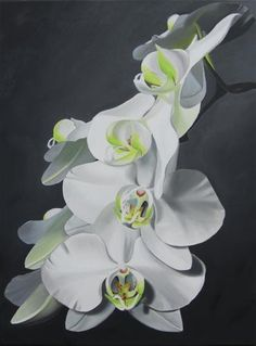 "Daily Paintworks - ""Orchid Ovation"" by Amy Hillenbrand"