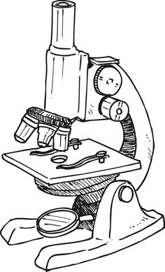 Ideas on teaching microscope use. Start with a compound