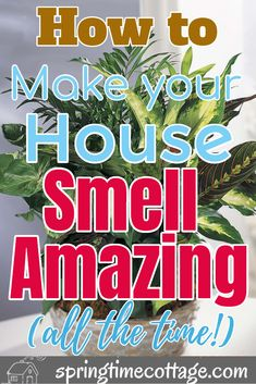 Diy Home Cleaning, Homemade Cleaning Products, Household Cleaning Tips, Cleaning Recipes, Green Cleaning, House Cleaning Tips, Natural Cleaning Products, Cleaning Hacks, House Smell Good