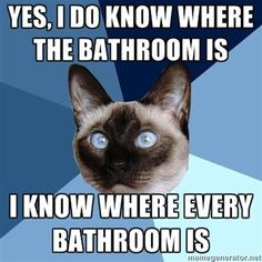 Yes, I do know where the #bathroom is. I know where EVERY bathroom is.  I don't go places without this knowledge. Lol