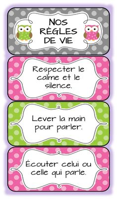 Classroom rules in French French Teaching Resources, Teaching French, Teaching Tools, Teaching Ideas, French Classroom, Classroom Rules, Classroom Organization, Classroom Ideas, Owl Classroom