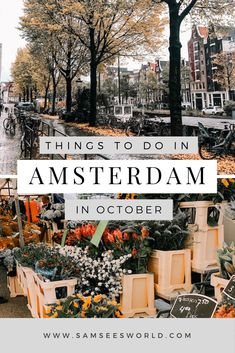 The top things to do in Amsterdam in October. October is one of Amsterdams most magical months and the perfect time to visit. The Amsterdam photography is stunning and visiting places like the Anne Frank House, Dam Square and more are amazing. #Amsterdam #Travel #Wanderlust Europe Destinations, Places In Europe, Europe Travel Guide, Travel Guides, Travelling Europe, Italy Travel, European Vacation, European Travel, European Trips