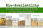 Bio-Availability: The Importance of Whole Foods in the Preppers Pantry