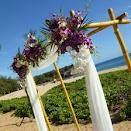 Bamboo wedding arbor