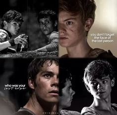 the maze runner - newt, thomas