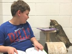 """Boy with Special Needs and Cranky Shelter Cat Become Best Friends 