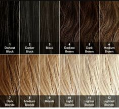 A hair color level chart ranging from 1 to 10 cosmetology charts