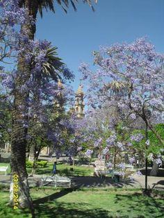 Al fondo, Templo de La Purísima, en el jardín del mismo nombre
