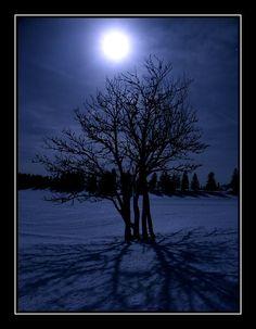 Full moon in the winter, La Chaux-de-Fonds, Switzerland Copyright: Vincent Bourrut