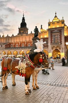 Explore Kraków's historic market square on Day 3 of the Rick Steves Best of Eastern Europe Tour. Beautiful Places In The World, Places Around The World, Around The Worlds, Poland Cities, Plitvice Lakes National Park, Poland Travel, Krakow Poland, Voyage Europe, Thinking Day