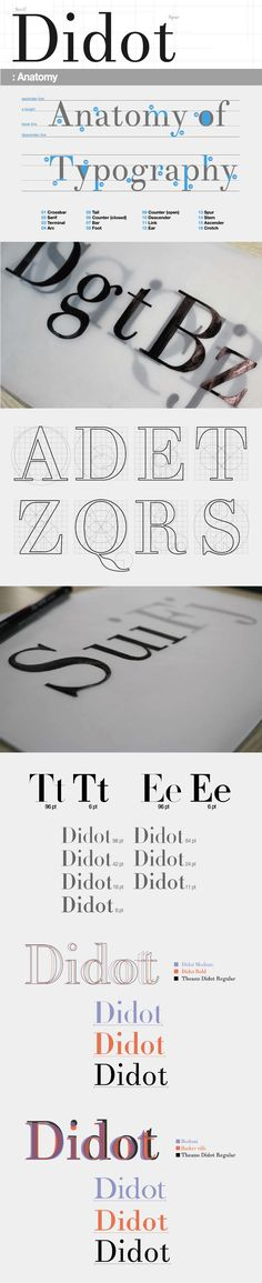 Didot / Typeface / Anatomy / Font || I like the idea of the outline of the text…