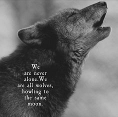 Check out -💙🐺💜Love Wolf Quotes?Check out - 38 Warrior Quotes That Will Inspire You 4 Wolf Qoutes, Lone Wolf Quotes, Wolf Pack Quotes, Poem Quotes, True Quotes, Atticus, Tier Wolf, Wolf Spirit Animal, Under The Moon