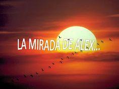 Camino de la Esperanza: LA MIRADA DE ALEX...