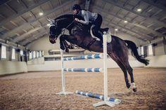 Practice makes perfect✨ #equestrian #equestrianstockholm #horse #equestrianperformance