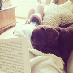 I love when this happens! Reading a good book,wearing comfy slippers or boots, having a really soft blanket,and having a super cute animal fall asleep on you