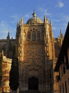 Puerta sur catedral nueva de Salamanca