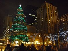 christmas trees edmonton