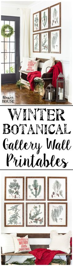 Ever since I took my first DIY class in grade I was hooked. My love for DIY decoration fits perfectly with our frugal living Botanical Gallery Wall, Botanical Prints, Christmas Entryway, Christmas Ideas, Christmas Decorations, Cottage Christmas, Country Christmas, Christmas Projects, Holiday Ideas