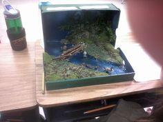 5th grade make a wetland model - Google Search