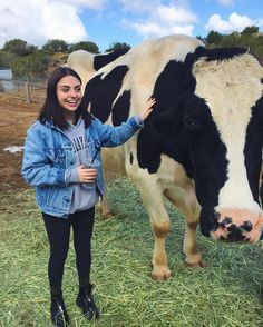 AMY ORDMAN @amyordman - Just a couple of cowsYooying