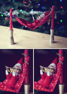 elf on the hammock