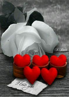 Resultado de imagem para love