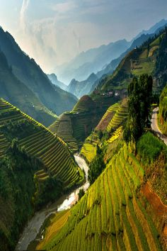 Mu cang chai, Vietnam. Really want to go here and take my Dad with me to. Mmmm better start saving.