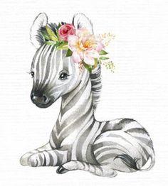 Safari Animals, Baby Animals, Cute Animals, Animal Babies, Baby Animal Drawings, Cute Drawings, Zebra Drawing, Cute Animal Illustration, Animal Illustrations