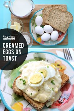 Creamed eggs on toas