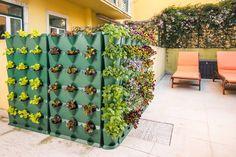 Minigarden vertical. Cultivos fáciles en #terrazas. #HuertoUrbano www.digebis.com