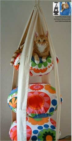 FRUGAL TIP: Make Your Own Cat Trapeze This looks like a fun Do-it-Yourself project! I searched for a tutorial but was unable to find one. But it shouldn't be too hard to figure out. Crazy Cat Lady, Crazy Cats, Photo Chat, Cat Room, Animal Projects, Diy Projects, Cat Crafts, Cat Furniture, Diy Stuffed Animals