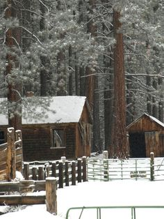 SEASONAL – WINTER – one of the reasons to love winter is the sanctuary provided by a secluded, cozy, and warm cabin in the woods, beneath the stars and whispering pines, my dream cabin stands, i go there in my heart and mind as often as i can.