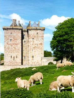 Borthwick Castle in Scotland. you can STAY here! Castle Ruins, Castle House, Medieval Castle, Scotland Castles, Scottish Castles, Castle Pictures, Kirchen, British Isles, Abandoned Places