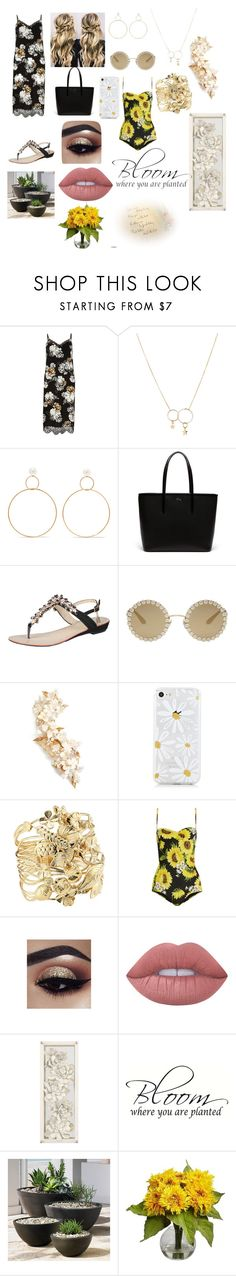 """""""Gradient"""" by sweetheart-the-moonbear ❤ liked on Polyvore featuring River Island, Zimmermann, Natasha Schweitzer, Lacoste, Laura Biagiotti, Dolce&Gabbana, Twigs & Honey, Aurélie Bidermann, Lime Crime and West Elm"""